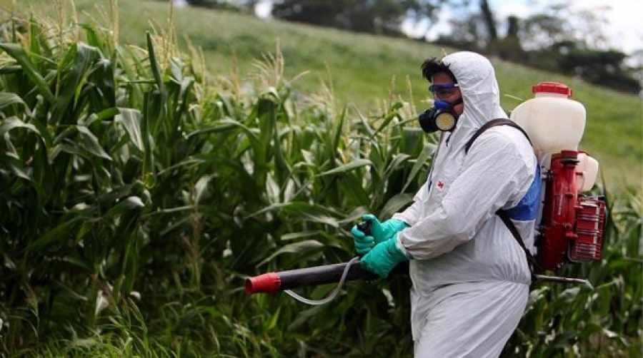 carnet de manipulador de productos fitosanitarios