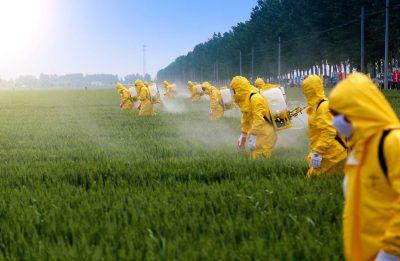 carnet de manipulador de productos fitosanitarios de nivel básico y cualificado